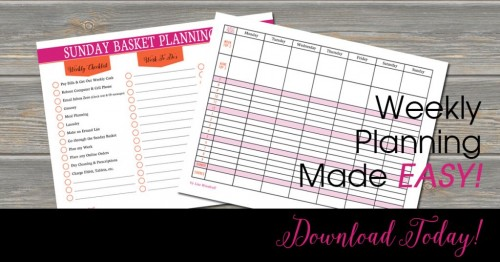 Weekly Planning Printables | This week I am planning summer vacation for my kids. Follow Professional Organizer Lisa Woodruff every Sunday night for weekly paper organization and planning.