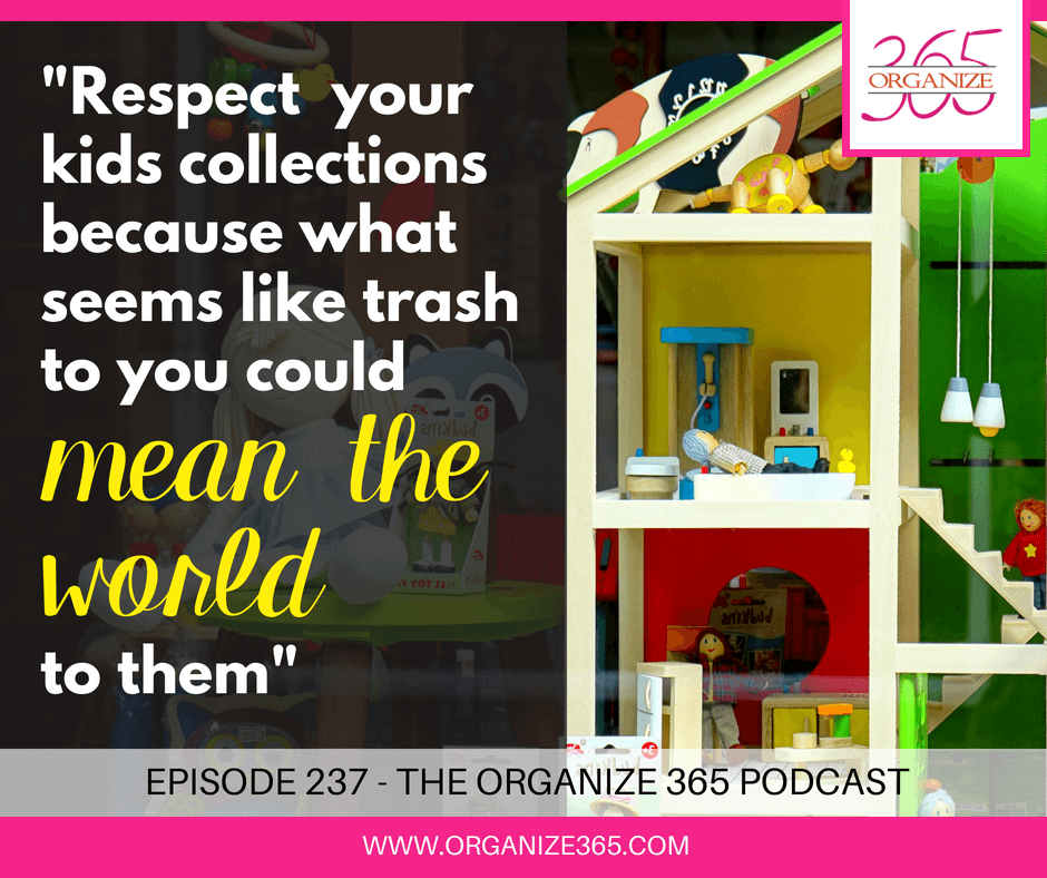 Respect Your Kids Collections | Organize 365