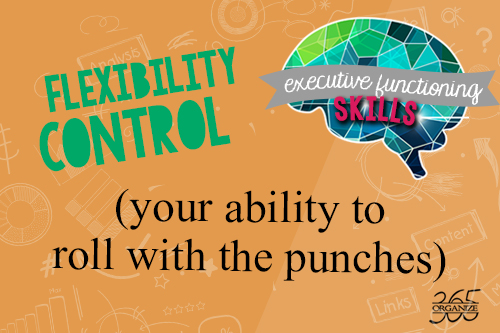 executive functioning skill of flexibility