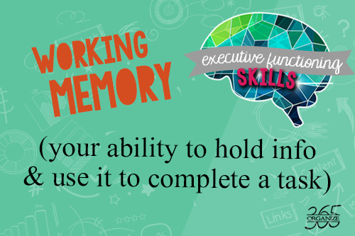 executive functioning skill of working memory